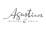Augustinos winery Chile